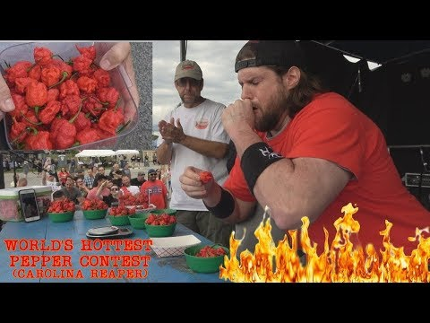 Eating 14 Carolina Reapers In 1 Minute (World's Hottest Pepper) Doesn't Go As Planned | L.A. BEAST