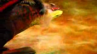 DreamWorks, How to Trąin Your Dragon Live Spectacular 05