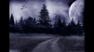 Фото КОП металлолома в ночном лесу. Инфракрасная съемка.