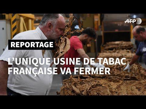 L'unique usine de tabac française vit ses derniers jours | AFP Reportage