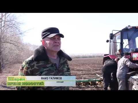 Новости Шаран ТВ от 26.04.2019