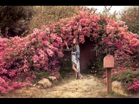 Liftoff - Olivia Mitchell