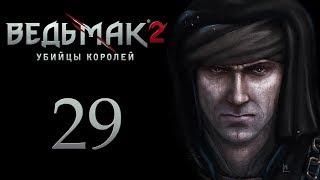 The Witcher 2 (Ведьмак 2) - Рыцарский турнир [#29]