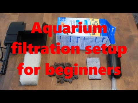 Aquarium Filtration Setup, Beginners Guide.