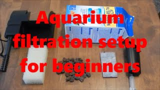 aquarium filtration setup beginners guide