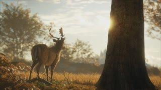 theHunter Call of The Wild BEAUTIFUL Gameplay Trailer