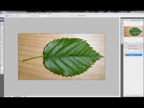 Урок по Photoshop создание Прозрачных Текстур для 3Ds MAX