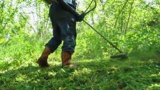 Fındık bahçesinde yabancı ot mücadelesi, tırpan yapıyoruz, asla kimyasal İLAÇ kullanmıyoruz.