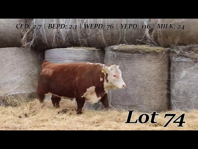 Sweiger Farms Lot 74
