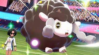 Beating Pokemon Sword and Shield using only Shiny Wooloo - The Finale