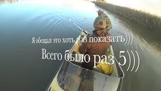 Рыбалка в Астрахани Зеленга октябрь 2020 г