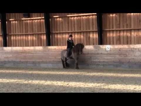 DI-seminar om Hypermobilitet: Lektion med Mette Manseth