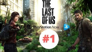 Playing Last of Us on PC finally [ PS NOW ]