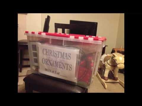 Labeling Storage Boxes for Garage Organization - Star of Paris