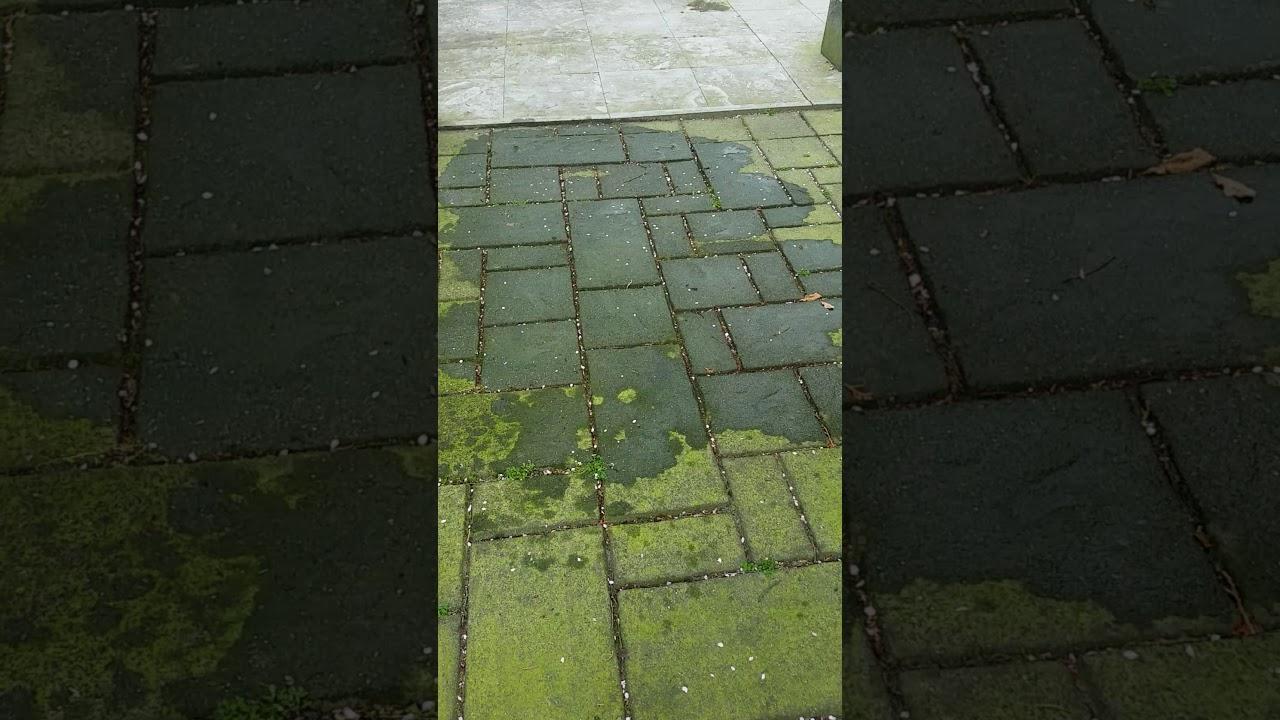 groene aanslag verwijderen met schoonmaakazijn