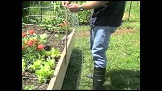Raised Bed Or Litter Box | Organic Gardening