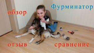 Фурминатор ✅ Обзор ✅Отзыв ✅Сравнение с расческами при чесании кошки и собаки