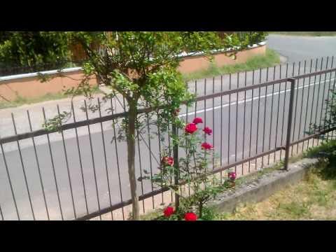 Video Ripresa in 720p con Acer Stream by batista70phone