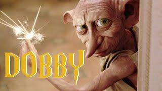 15 Choses A Savoir Sur Dobby !