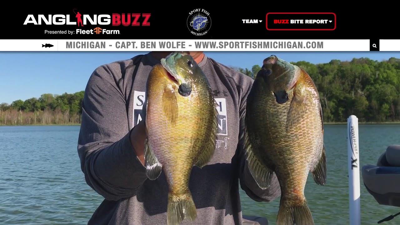 Fishing Report - Sport Fish Michigan Fishing Report