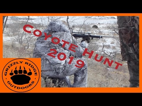 Coyote Hunting | 2019 Coyote Hunt | Charley Horses, Predator Calling Tactics & Tree Steaks!