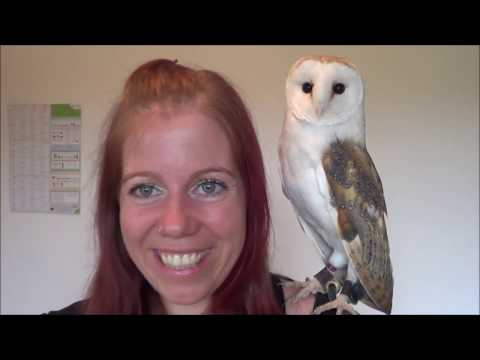 OWL EXPERIMENT: Lookie responds to owl calls on a speaker!