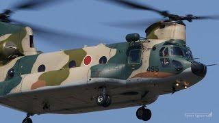 Japan Air Self-Defense force / JASDF CH47 Chinook Fukuoka Airport /...