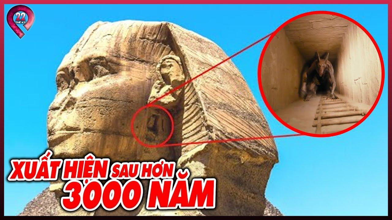 MỘT CÚ TÁT THỨC TỈNH   Hóa Ra Chúng Ta Đã Bị Dắt Mũi Bấy Lâu Nay? Bí Ẩn Chưa Ai Biết Về KIM TỰ THÁP