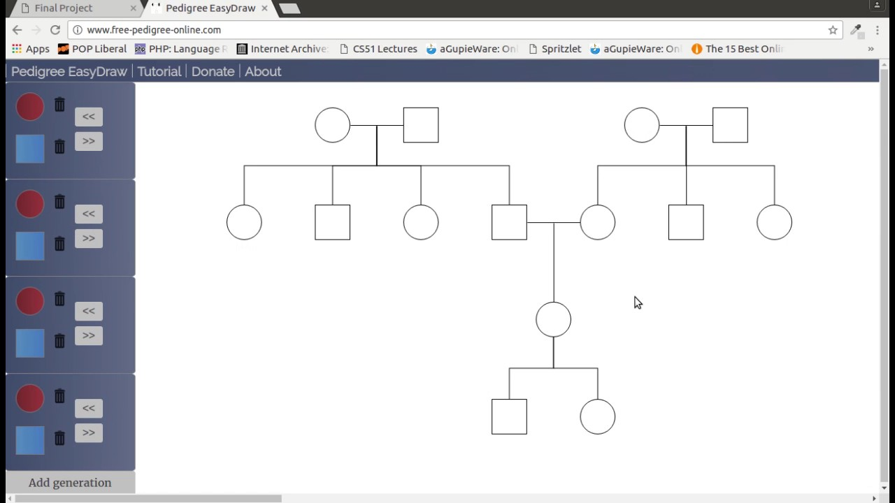 making a genogram