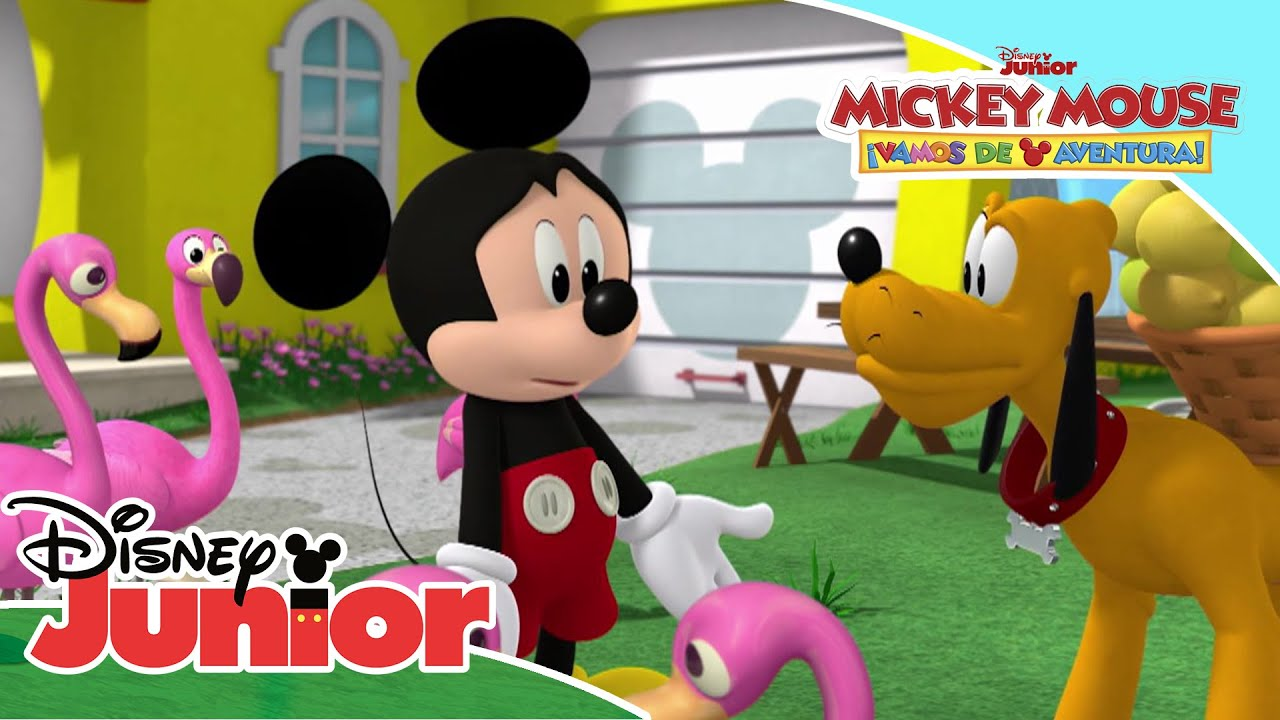Miniaventuras con Mickey: Flamencos a gogó | Disney Junior Oficial