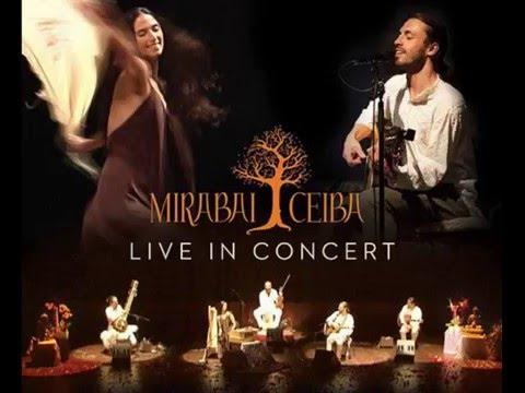 Mirabai Ceiba - Ajai Alai