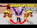 I BOUGHT 3 LEGENDARY DOGE PETS IN WARRIOR SIMULATOR AND BECAME OVERPOWERED!! *13k Robux* (Roblox)