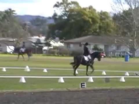Gina's Horse