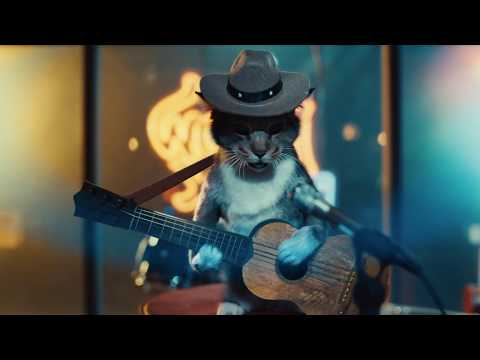 Meow – Heart & Paws (Extended Cut)