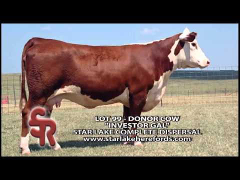 Star Lake Cattle Ranch featured on The American Rancher on RFD-TV