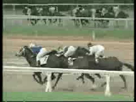 A.P. Five Hundred (A.P. INDY y BANNER DANCER por Danzig)