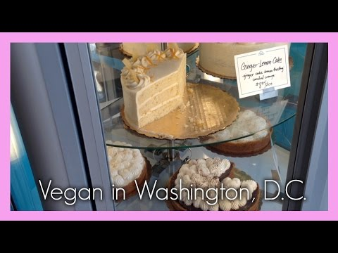 Vegan Travel Vlog #1: Washington, D.C.