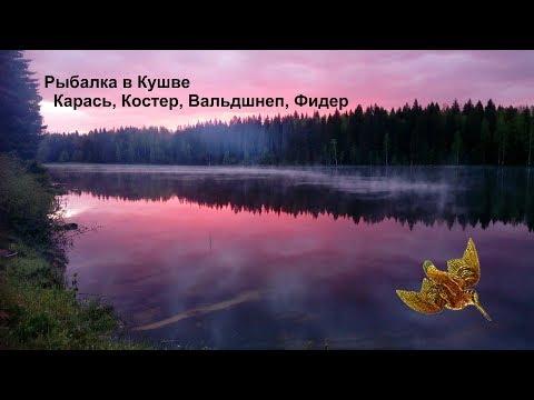 Рыбалка в Кушве -Карась, Костер, Вальдшнеп, Фидер