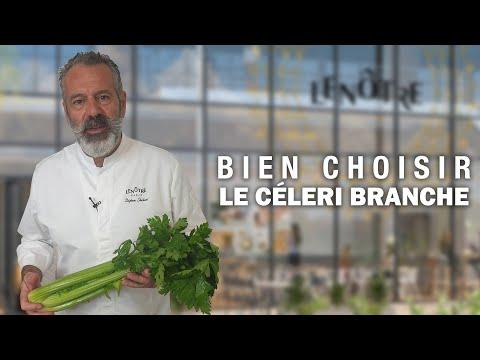 BIEN CHOISIR LE CELERI BRANCHE by Stéphane Chicheri