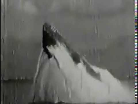 WWII US submarine emergency surfacing, bow-up