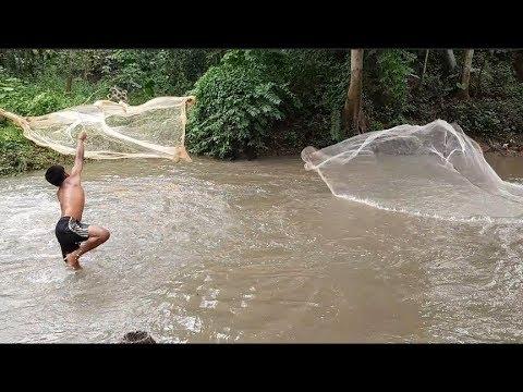 Net Fishing।Fishing With Cast Net।Cast Net Fishing In The Village (part-46)