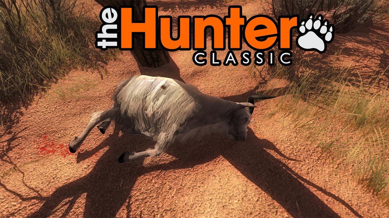 the hunter deutsch