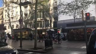 Atentado en Barcelona 🤕😭😤