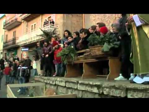Festa sant 39 antonio abate cerami 2011 a calata du circu for Arredo bimbo sant antonio abate