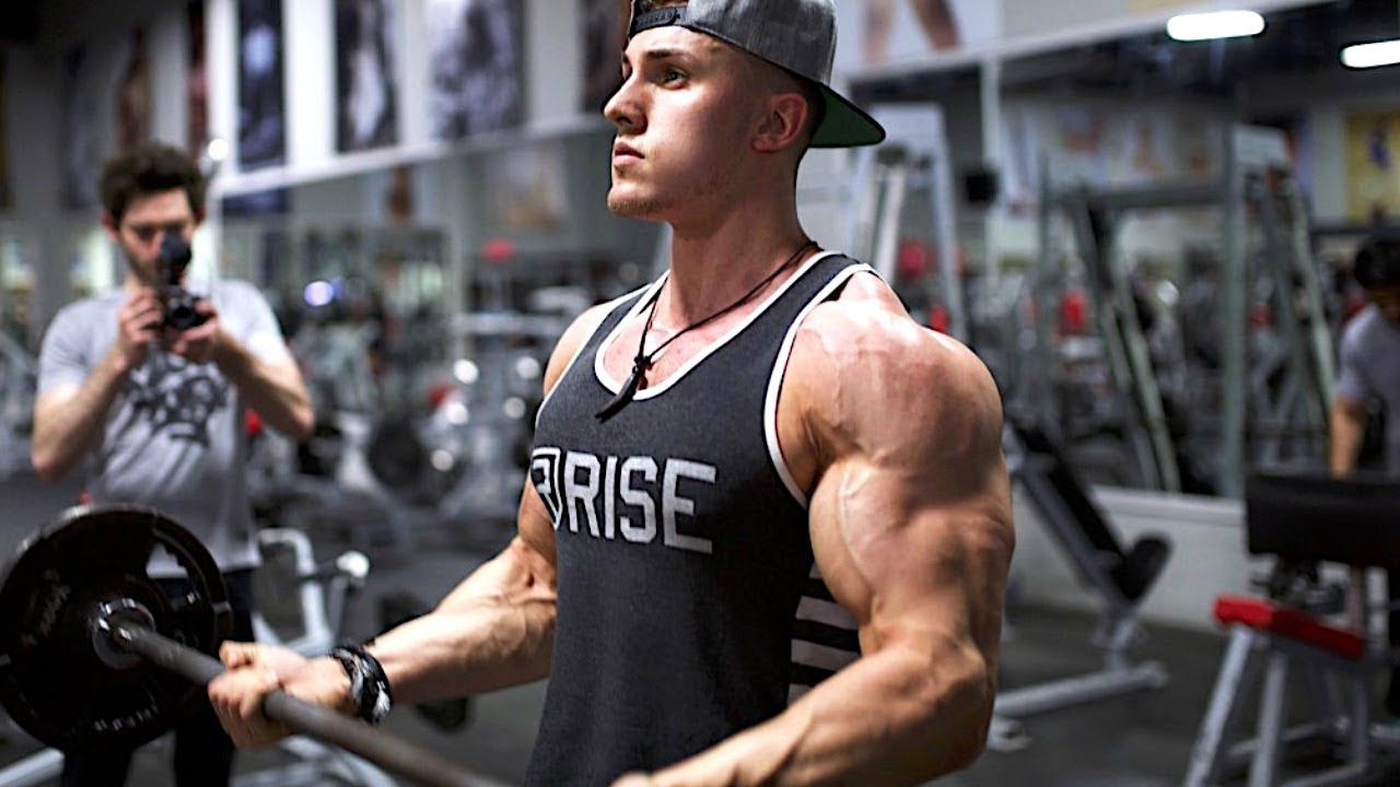 How to pump your biceps and triceps at home: a training program and recommendations 65