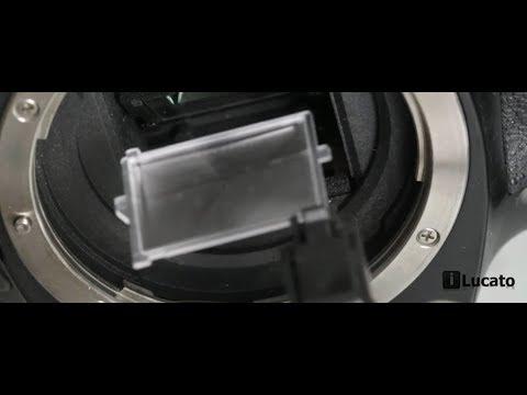 Como trocar a tela de foco (despolido) de sua Canon EOS Rebel T3i 600D T4i 650D T5i 700D ETC