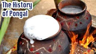 The History of Makar Sankranti [Thai Pongal ] - Tamil Harvest Festival Celebration - தை பொங்கல்