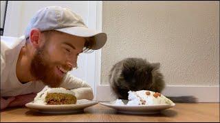 MAKING MY CAT A CAKE!
