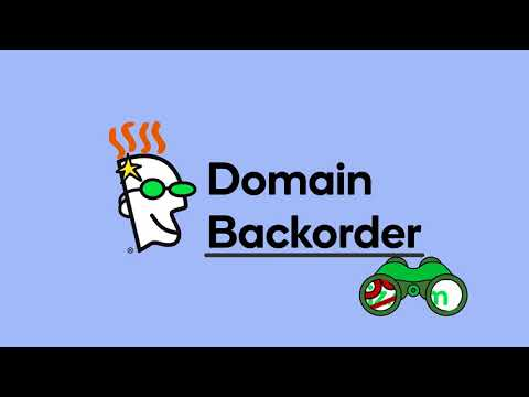 What Is A Domain Backorder   Godaddy