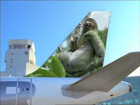 Frontier Airlines Auditions: Part 2 - YouTube